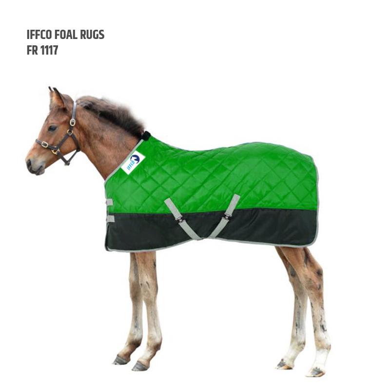 Foal Rugs